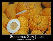Photo of Squeezed Sun Juice